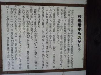 めだかの学校荻窪用水.jpg