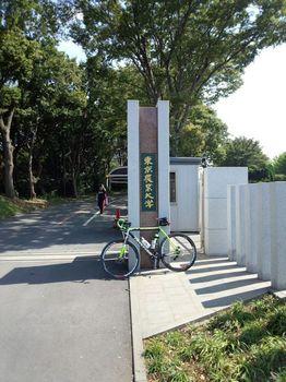 東京農業大学厚木キャンパス.jpg