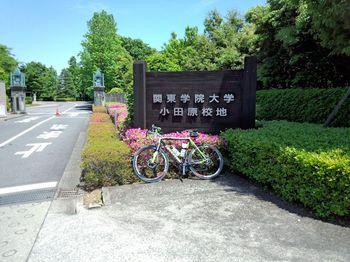 関東学院大学・湘南・小田原キャンパス.jpg